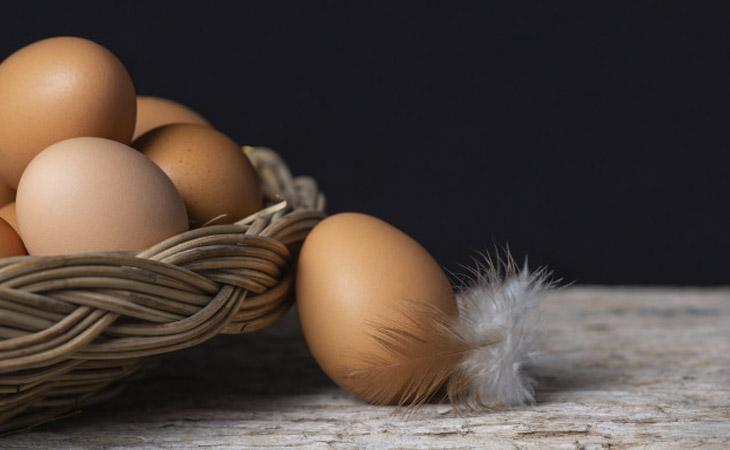 Carnes e Ovos
