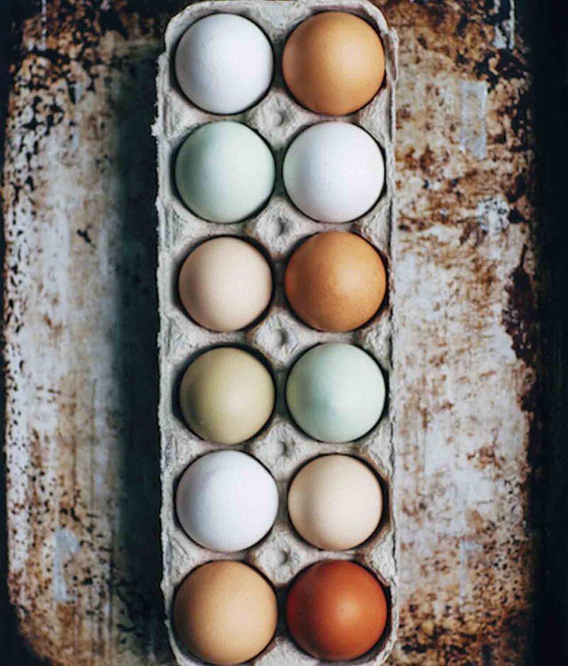 ovo médio orgânico