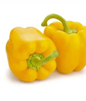 pimentão_amarelo_organico