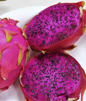 Pitaya Rosa Orgânica